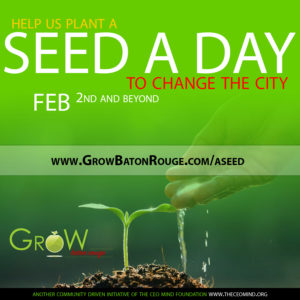 A Seed A Day